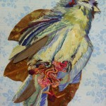 dead bird in catalunya
