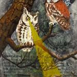 owls birds postcard books field guide screech owl hunting night mouse