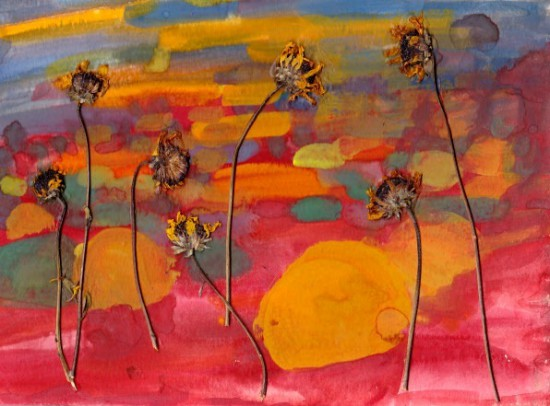 nature catalina island california dried flowers gouache painting on paper