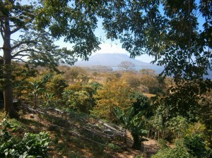 Bona Fide gardens with view of Volcan Concepcion